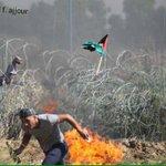 رفع العلم الفلسطيني على سلك موقع ناحل عوز #غزة #فلسطن_تنتفض http://t.co/dTVp6bbCAI