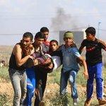 #فلسطين_تنتفض حماس تنعى شهداء غزة وتحمل الاحتلال مسؤولية التصعيد http://t.co/PeI9qc8a6D http://t.co/hyG2FXW1ET