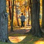 Early fall: 7 of our favorite foliage photos https://t.co/Lp8hnWIeuP @PKapteyn @SteveLanava @chochphoto http://t.co/9VBJaPW17b