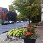 So blessed to live in such a beautiful city, with streets like this! #glebe #ottawa #4th http://t.co/6TbYzTANLL