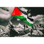 سلام عليكي ..اما ان لي ان اقدم بعض الهدايا اليكي ..اما ان لي ان اعود اليكي #فلسطين #فلسطين_تقاوم http://t.co/6VMBCavNC9