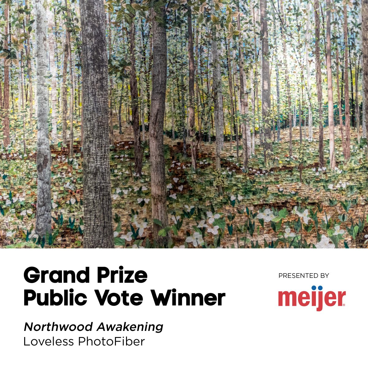 The winner of the #ArtPrize7 Public Vote $200,000 Grand Prize: http://t.co/f2Zgv40xVD