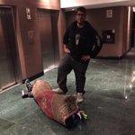 """""""@ElvisaYM: Mangel y su equipaje de mano :D http://t.co/hd6kpXH2Xx"""""""