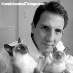 @DrVet_Peru @panchocavero1 Una mascota nunca te pedirá nada a cambio para cuidarte y darte su amor #UnaHoraConDrVet http://t.co/ZT5o9qIk9B