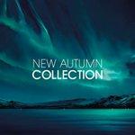 Castle Fine Arts New Autumn Collection 2015 #Nottingham ???? http://t.co/3zjOoLDbXo http://t.co/KG4myBEZ8g