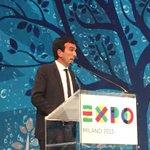 Conclude il Min. Martina: Expo é un nuovo dibattito da prolungare anche dopo la fine di Expo #DopoExpo #Expo2015 http://t.co/B5Xcakfx8e
