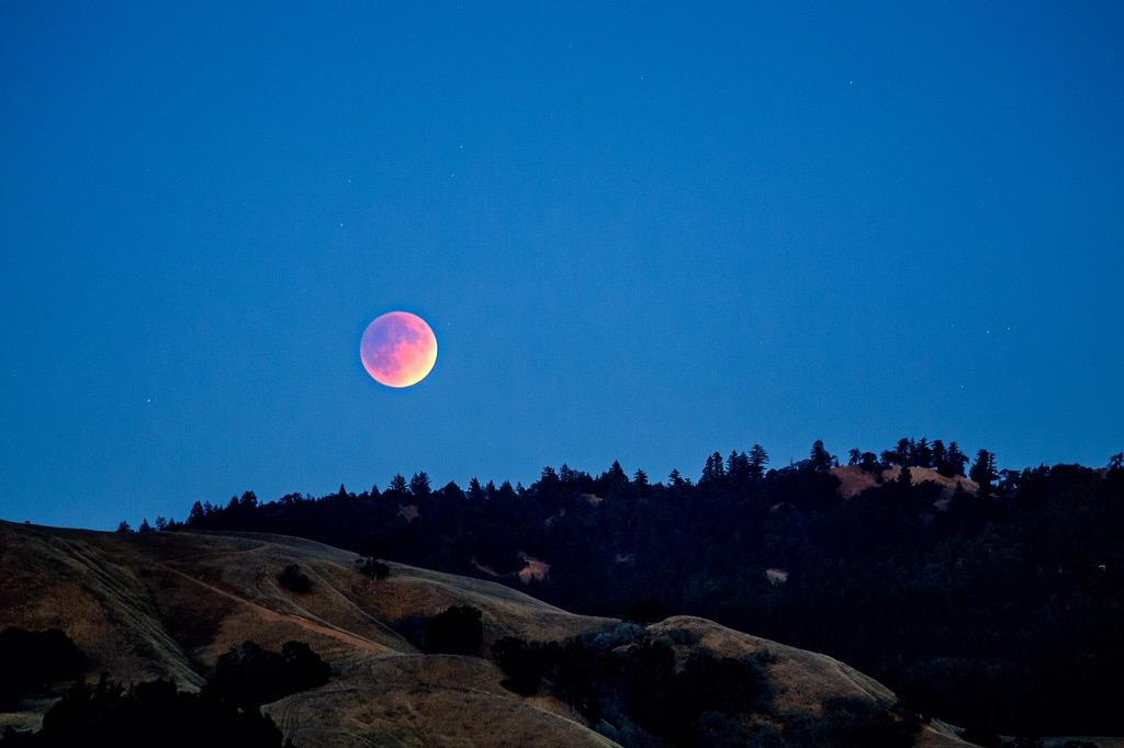 Last night's blood moon from atop our brew house... #andersonvalley #bloodmoon #lifehereislegendary http://t.co/CRZNVN1PGZ
