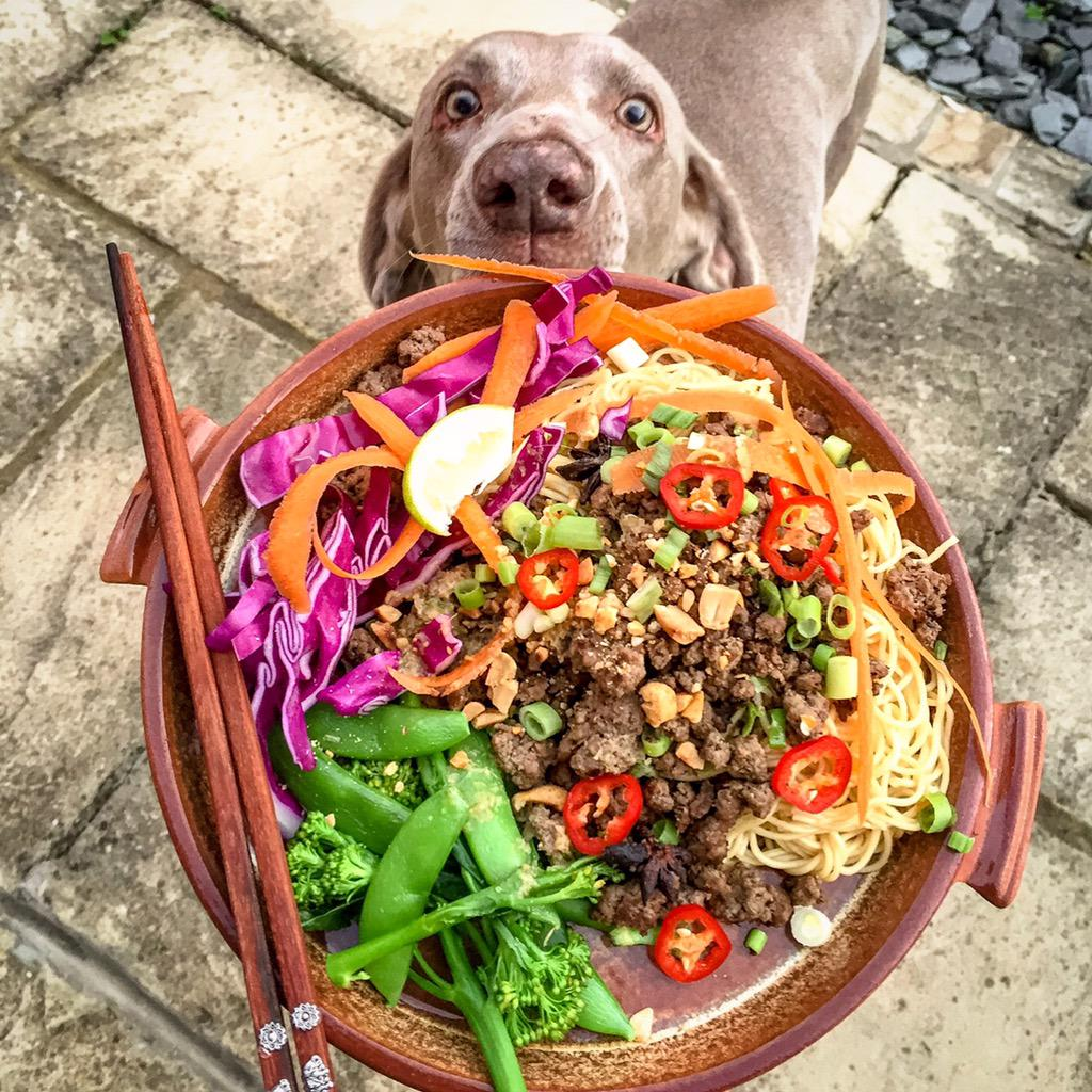 RT @Biffenskitchen: @jamieoliver Asian Crispy Beef with Noodles and Raw Salad. It wasn't just me with my eye on it! #JamiesSuperFood http:/…