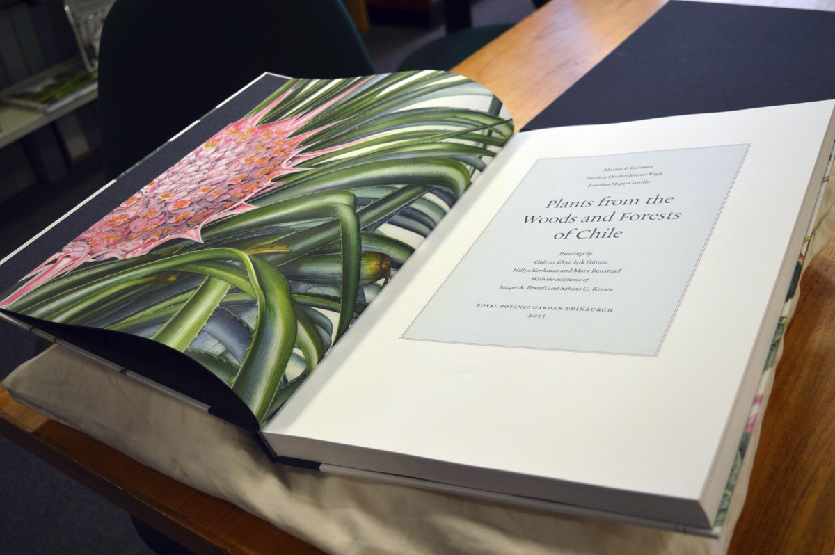 Hot off the press! Exciting first look at our new book 'Plants from the Woods and Forests of Chile' http://t.co/DxnpqL4ZGQ