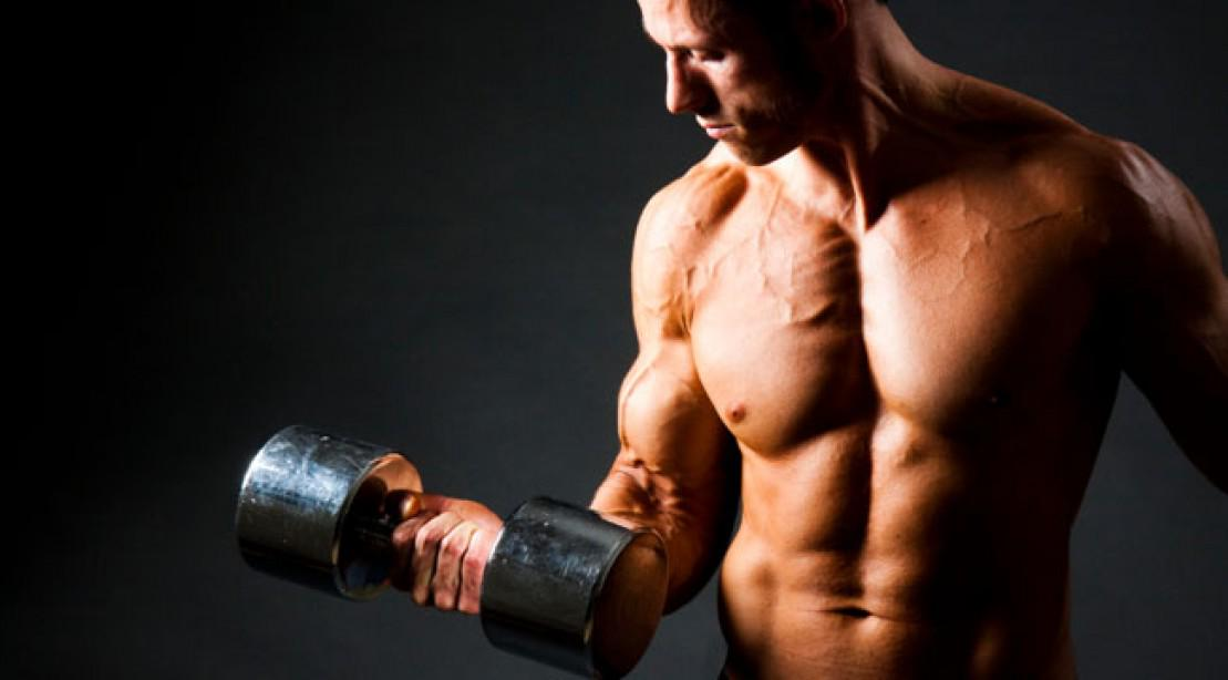 muscle physiology strength training concepts in