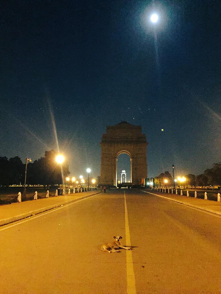 This guy has the best bed view in India. #IndiaGate http://t.co/49dsFutzp6