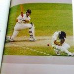 RT @BeingCriCrazy: Most dangerous fielding position in Cricket when @HaydosTweets sweeping like that. @cricketaakash #TheInsider http://t.c…