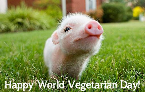 Happy #WorldVegetarianDay! http://t.co/tKEIh9AV03