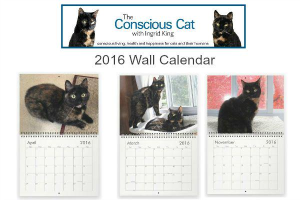 2016 Tortoiseshell Cat Wall Calendar, featuring Allegra and Ruby Now Available! http://t.co/Cs99BWXG4w #tortitude http://t.co/Pz12RijJVc