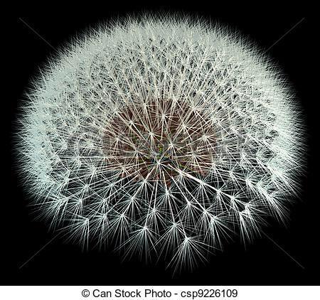 Happy #FibonacciFriday my friends! http://t.co/hhuodIs1l1