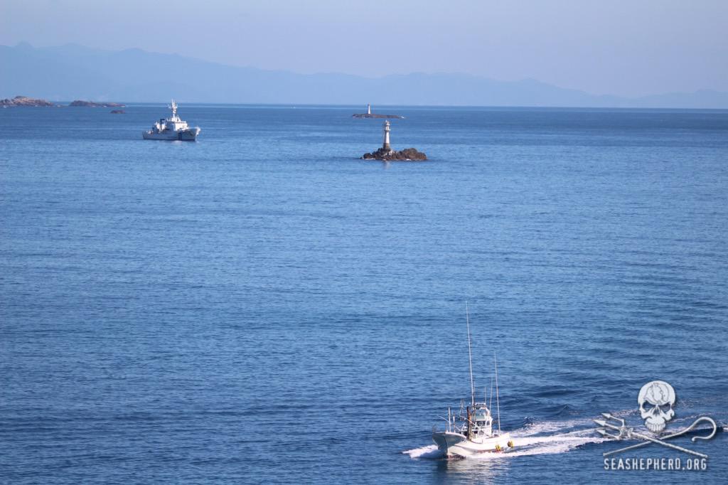 RT @CoveGuardians: 0955am: Hunting vessel 12 has returned empty. BLUE COVE DAY!  #tweet4taiji  #OpHenkaku http://t.co/Ri4QvjVjqI