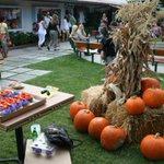 12 Halloween events in LA http://t.co/0euz2OCmq2 http://t.co/kjqSmsMYEI