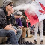""".@PMHarper says marijuana is """"infinitely worse"""" than tobacco. Health experts say hes wrong. http://t.co/U63ynxhisp http://t.co/gg5dilxkD4"""