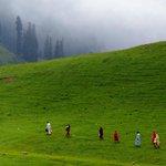 A green trail others must follow.... #Pakistan #Kaghan #myclick #summer2015 #PayeMeadows http://t.co/ajHvHJ8rPp