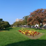 #Southend Cliff Gardens this morning http://t.co/LL9uIXvgzW