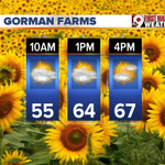 Looks like a decent forecast to head out to Gorman Farms Sunflower Festival today! 10AM-4 PM. @wcpo #CincyWx http://t.co/SGPH8Dkl8F