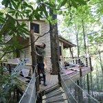 FINALLY! I can finally live in a treehouse. Dreams do come true. http://t.co/X96v04Qapq via @EmilyWCPO, @WCPO http://t.co/C8sn8Adl3v