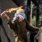 يا #نبض #الضفة لا تهدأ أعلنها #ثورة، حطم قيدك إجعل لحمك جسرالعودة. #القدس #فلسطين_المحتلة http://t.co/7cXvz9S80j