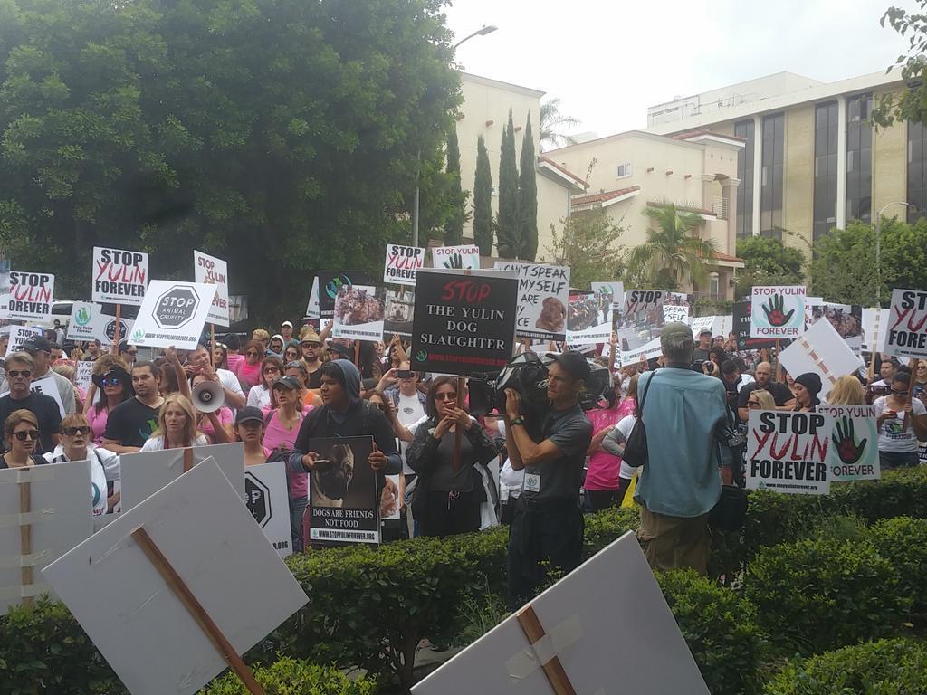 Retweeted STOP YULIN FOREVER (@stopyulinforevr):  #StopYulinForever http://t.co/LiyRABT1H9 http://t.co/qI2IzbOZyT