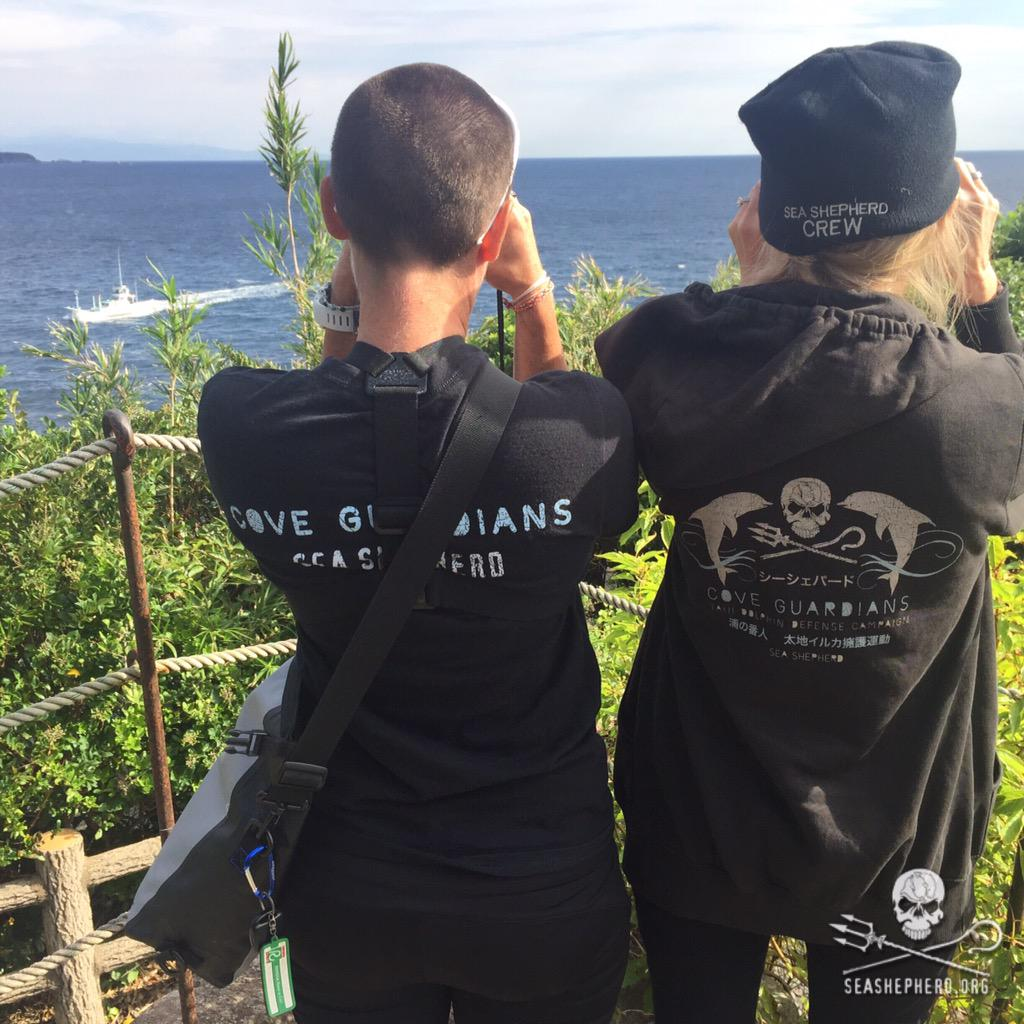 RT @CoveGuardians: 0900am: This makes 12 Blue Cove days in a row as all boats return empty. #tweet4taiji  #OpHenkaku http://t.co/7EW9I5IZDM
