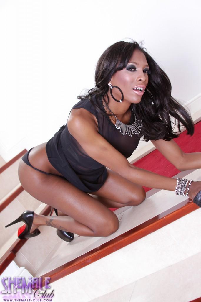 RT : Black cutie Natassia spreads her ass #shemale #tranny #transgirl