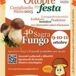 Ottobre in festa Camigliatello Silano 2015 46 Edizione Sagra del Fungo 9-10-11 Ottobre #Event #Calabria #October http://t.co/OYkt7h7DkW