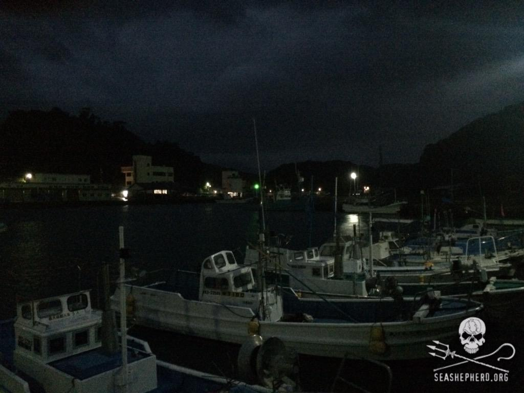 RT @CoveGuardians: 0530am: Blue Cove Day number 13 due to winds and rain. #tweet4taiji  #OpHenkaku http://t.co/6hexfltKWE