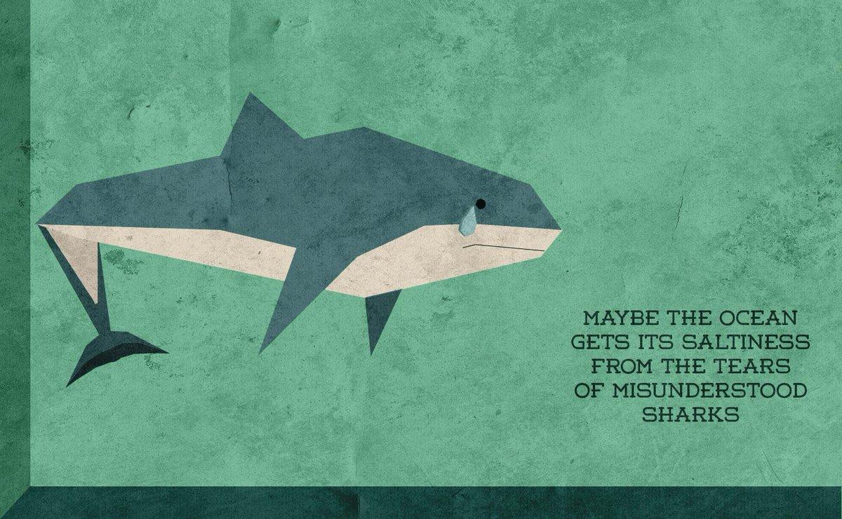 """""""misunderstood shark"""" - http://t.co/sC3bSSGXaf http://t.co/wQweFYa9ao"""