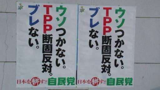 改めて。自民党が民主党政権をひっくり返した時の2012年の自民党ポスター。  どこかのメディア、指摘してよ!  「ウソつかない。   TPP断固反対。   ブレない。    日本を耕す‼自民党」 http://t.co/asenwLqivq
