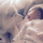#zapeando467 Amor a primera vista, Kira & Enzo ❤❤ http://t.co/5MjiWfnYeI