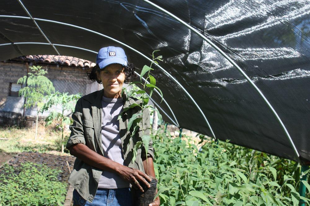 #Honduras y @WFP trabajando juntos para fomentar la resiliencia al #CambioClimático http://t.co/Gg7YzXjcqW. http://t.co/Ho74wFSiwD