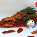 App-controlled Autumn speedster. Thanks for the inspiration @socreativepics @Craft_Hour #reuse #reinvent http://t.co/QsEFJojaNL
