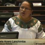 @AceroEsthela #CodigoAmbiente Pide que se tenga flexibilidad y se escuche a las personas del sector rural. http://t.co/1mMLJN7Zne