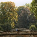 Lovely autumn colours in #Cambridge today http://t.co/2zAApAgqT5