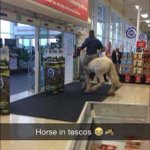 This horse was spotted walking around a Tesco in Galway today http://t.co/ldNUKfO08h http://t.co/DjL0u0JnuJ