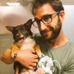 Suerte #Chico #AmoresPerrunos @El_Hormiguero No al Maltrato Animal. http://t.co/baggXvEreG