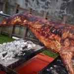 @KuantanTV memerlukan kambing utk aqiqah & pelbagai majlis atau perkhidmatan kambing golek.hubungi 0162238518 segera http://t.co/nr2lRrEWkV