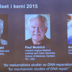 The Nobel Prize in Chemistry is awarded to Tomas Lindahl, Paul Modrich and Aziz Sancar for DNA repair studies http://t.co/614t1x9bru