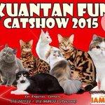 Woit ada cat show lah. Kpd pengemar dan peminat kucing kasi serbu lah  @Twt_Kuantan @KuantanTV @twt_pahang http://t.co/0pNaircUe9