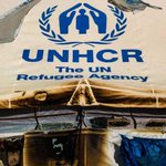 Photographing Europe's refugee crisis for the United Nations http://t.co/JTZpcxAPqC http://t.co/Ekai5ofMuD