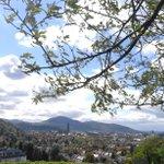 Kleiner Mittagsgruss aus Freiburg ???????????? short little midday Tweet from Freiburg http://t.co/dxMFkDUnYu