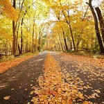 Six secret and not-so-secret #Madison area spots to leaf peep & reconnect with nature. #fall http://t.co/oICZV1rLjB http://t.co/z23G1baS54