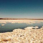 Silencio cómplice en Tarapacá = poder económico de SQM = destrucción Salar de Llamara. #Chile #Iquique http://t.co/HzERXLQceS