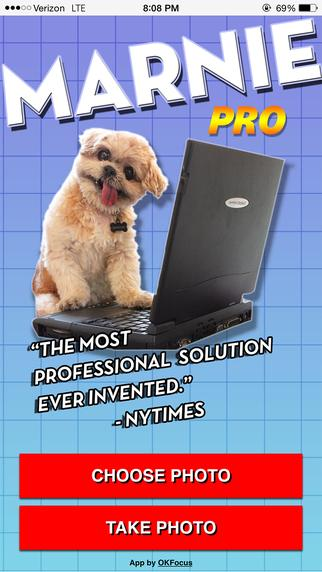 New app we made with @MarnieTheDog !! YES DOGS CAN MAKE APPS! https://t.co/7oNIBp0JcF http://t.co/krS2yDWbvG