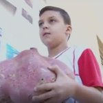Menino colhe em casa batata doce de 7 kg plantada para projeto escolar http://t.co/2HK0QlWd9S #G1 http://t.co/dXnd2kSlxV